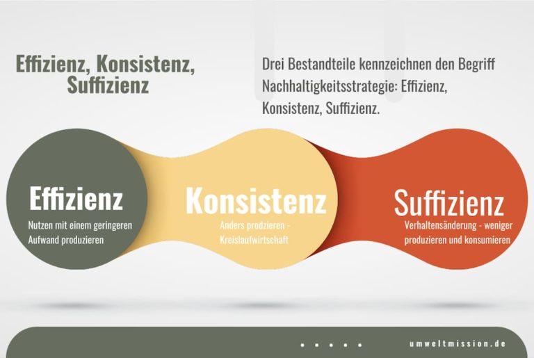 Effizienz - Konsistenz - Suffizienz
