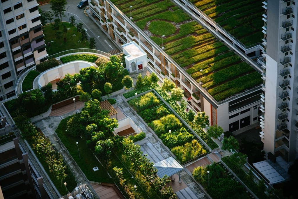Urban Gardening auf dem Hausdach