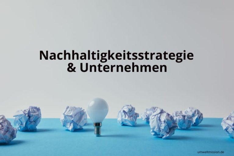 Nachhaltigkeitsstrategie und Unternehmen